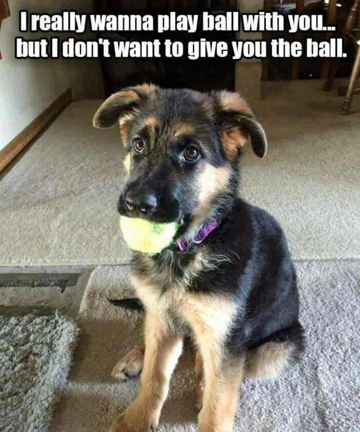 I really wanna play ball with you… but I don't want to give you the ball.