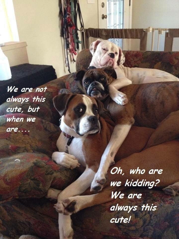 We are not always this cute, but when we are…