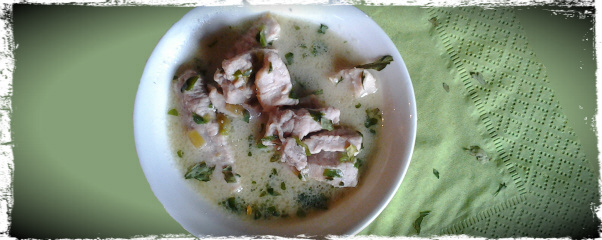 thai pork soup for dogs