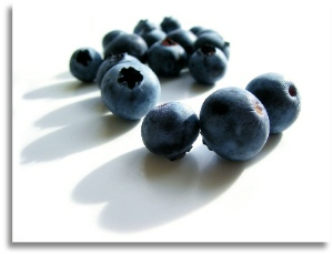 are blueberries dangerous for dogs?