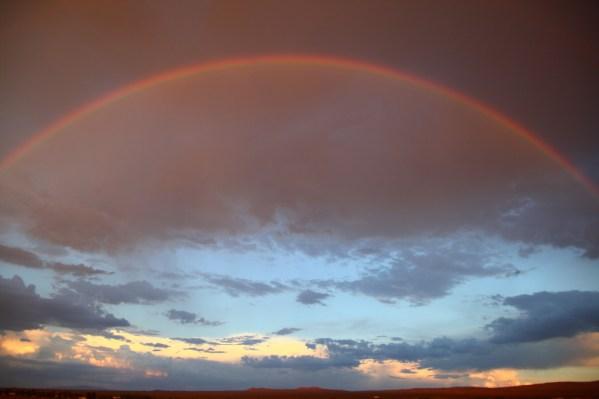 rainbow bridge when loosing a pet