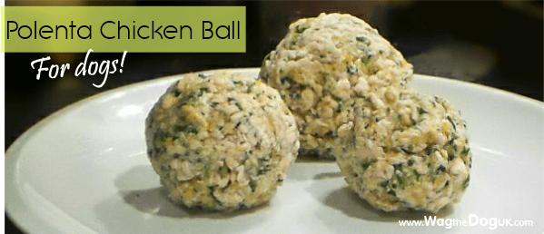 homemade dog food polenta chicken