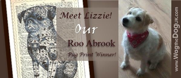 pug dog print winner