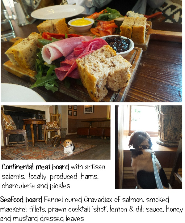 dog friendly lunch dining