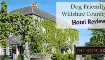 Autumn walks in wiltshire with interactive dog walks mapDog Friendly Places To Stay Near Bath  pet friendly destinations  . Dog Friendly Places To Stay Bath. Home Design Ideas