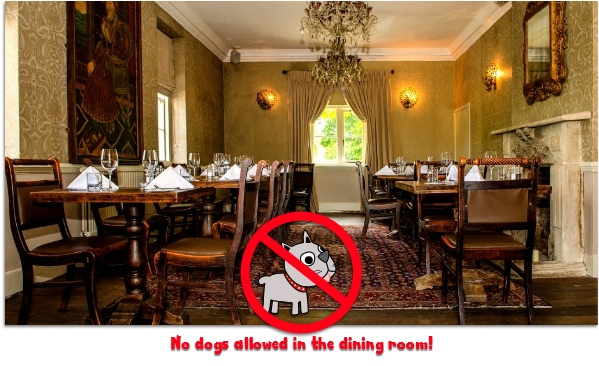 dog friendly dining policy at the bath arms