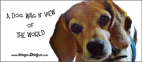 a dog wag n view of the world cover