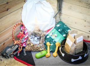 doggy gift box give back