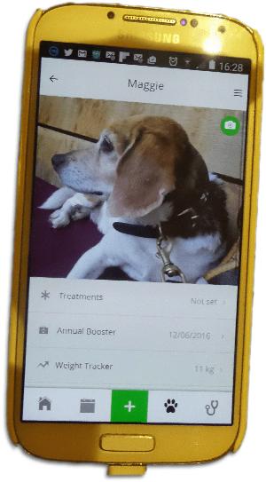 pet assistant app maggie