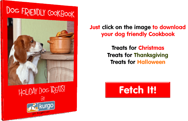 holiday treats for dogs