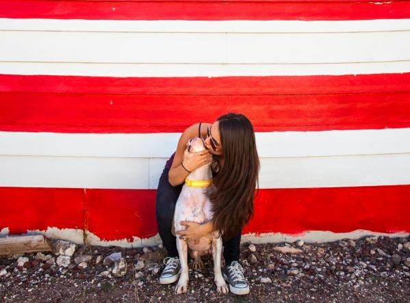 reward based dog training