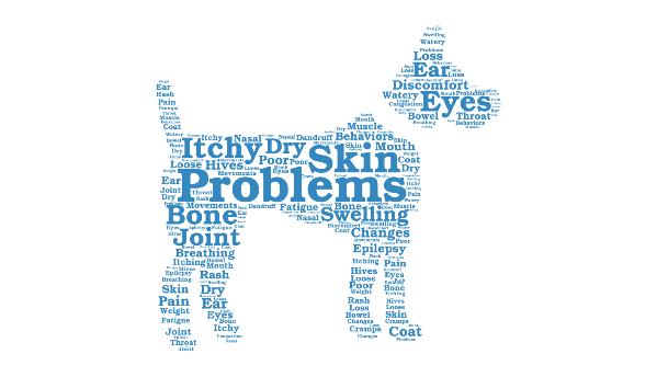 itcy dog symptoms