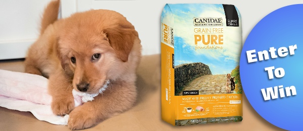 canidae puppy food