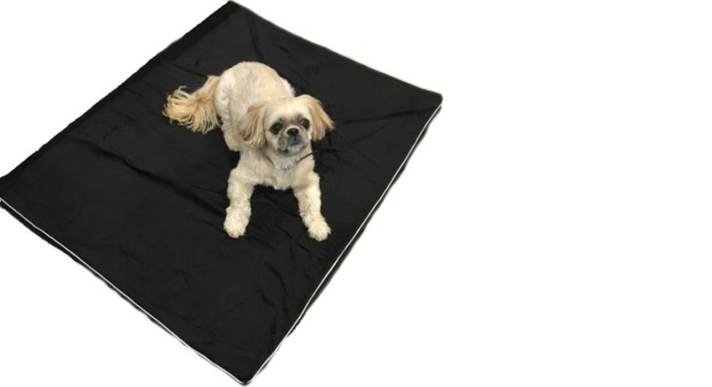 shelter dog bed
