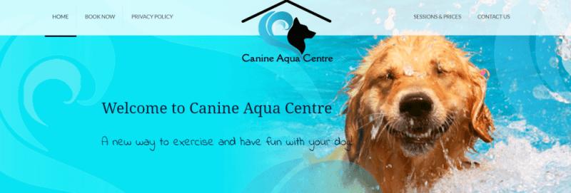 aqua dog dog lovers