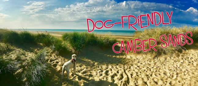 camber sands cover