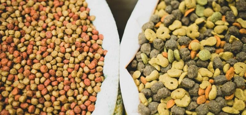 dog food ingredients while buying