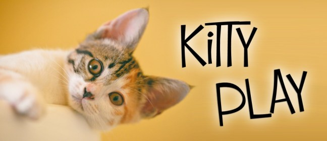 kitty play cover