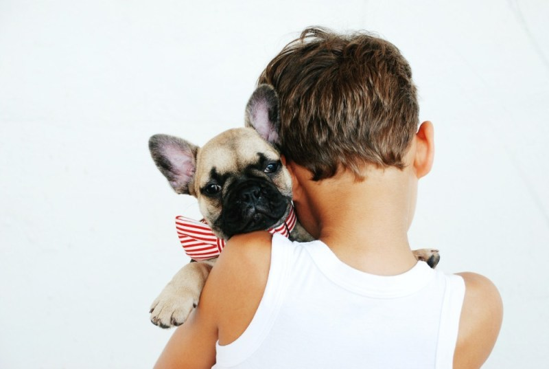 illnesses from dog and boy