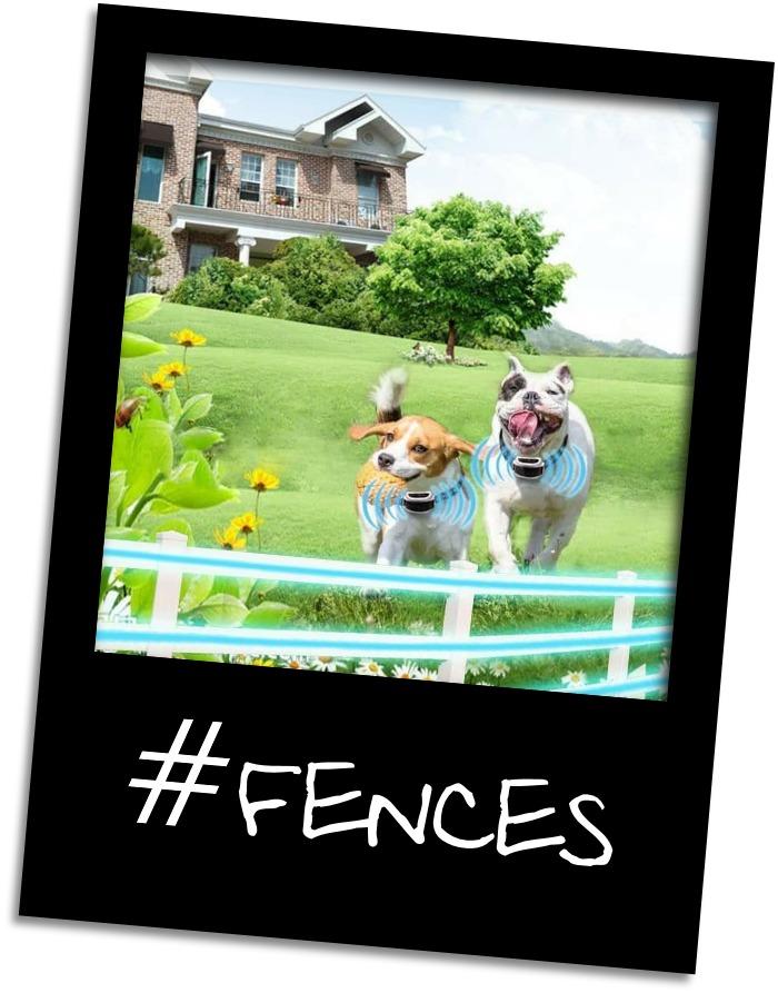 wireless fences gr