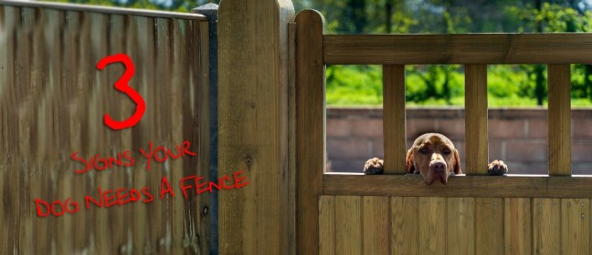 dog fence cover