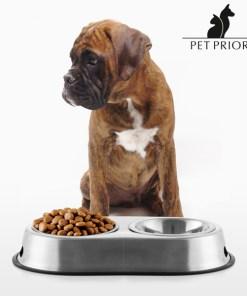 Comedouro-Bebedouro para Animais de Estimação Pet Prior