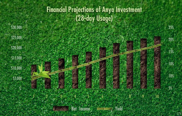 ANYA Financial Projections