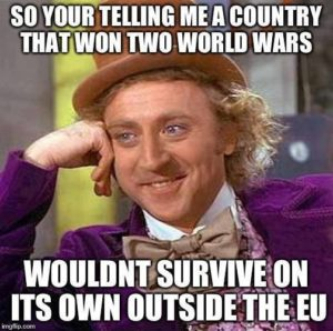 So youre telling me a country that won two world wars wouldnt survive on its own outside the EU