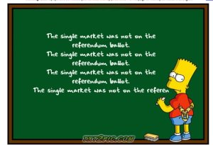The single market was not on the referendum!