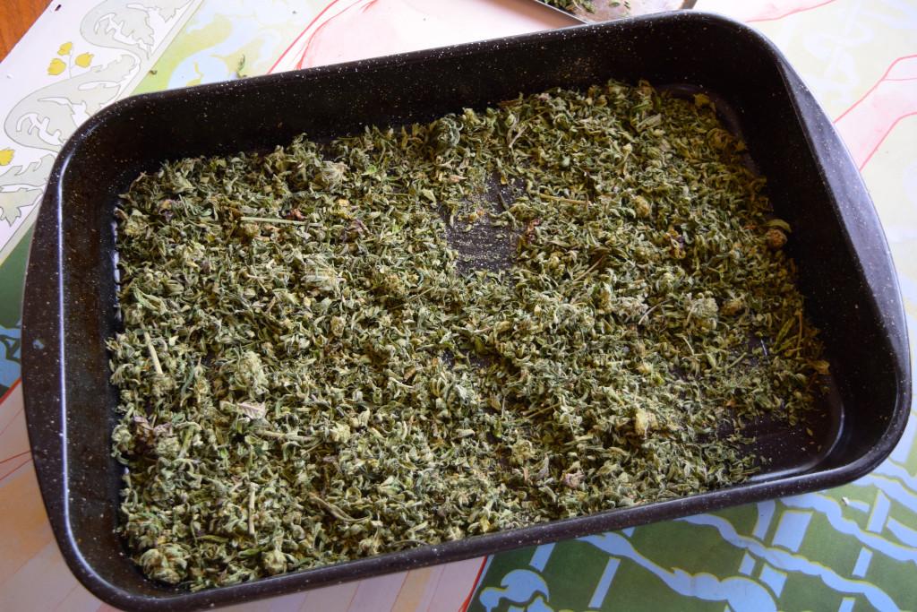 decarbed marijuana