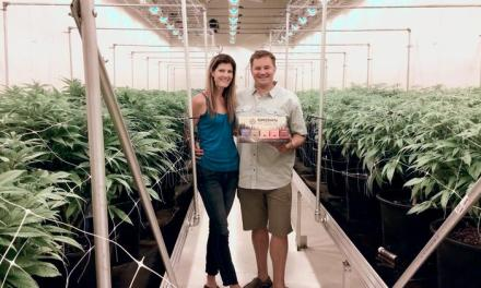 Grown Rogue Cannabis Growers, One of The NW's Largest, Expand To California & Soon Nevada