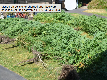 Western Australia 69 Year Old Pensioner Living With His 90 Year Old Mom Busted with 19 Plants