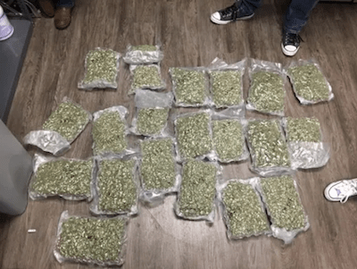 Woman arrested with 63 pounds of weed at Tallahassee airport, tells police it's not hers