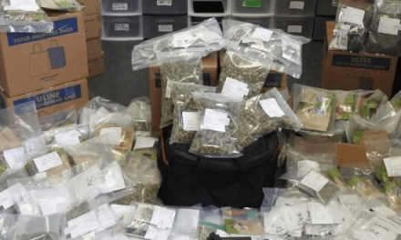 Canada: Edmonton police crack down on illegal weed delivery service