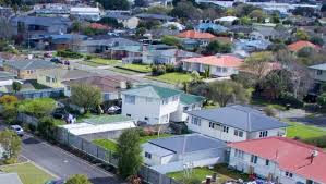 New Zealand: Manawatū weed raids uncover more than 80 plants and 14 pounds of cannabis head