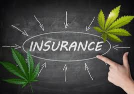 Article – Insurance Law: Cannabis Cultivation Market Expanding, But Insurance Might be a Headwind