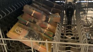 Using The Dishwasher To Launder Your Drug Proceeds !