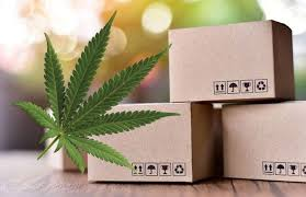Article: Shipping medical cannabis: a Dutch perspective