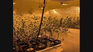 Cali: Two Tons Of Weed Found By Police in SOCAL – Growers Scammed Electricity To Tune of $US140K