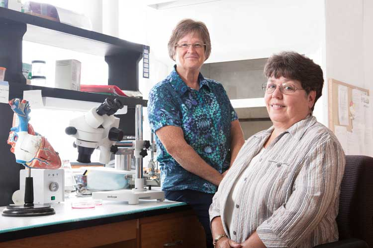 Patricia Gallagher, PhD, and Ann Tallant, PhD, are scientists at Wake Forest School of Medicine's Hypertension and Vascular Research Center