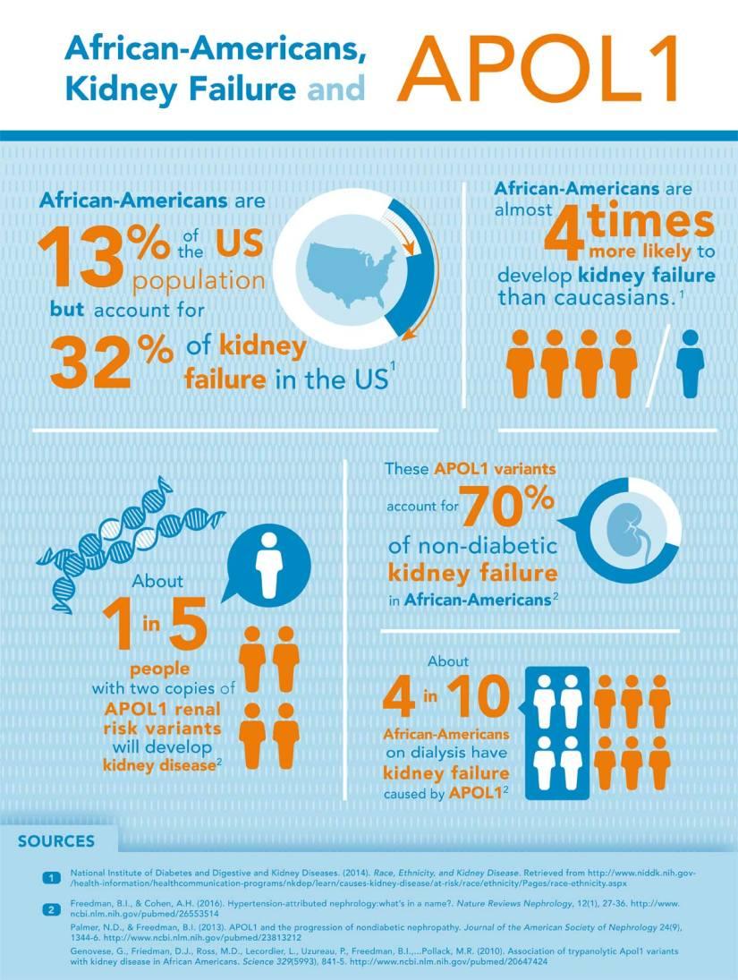 Kidney Disease Infographic