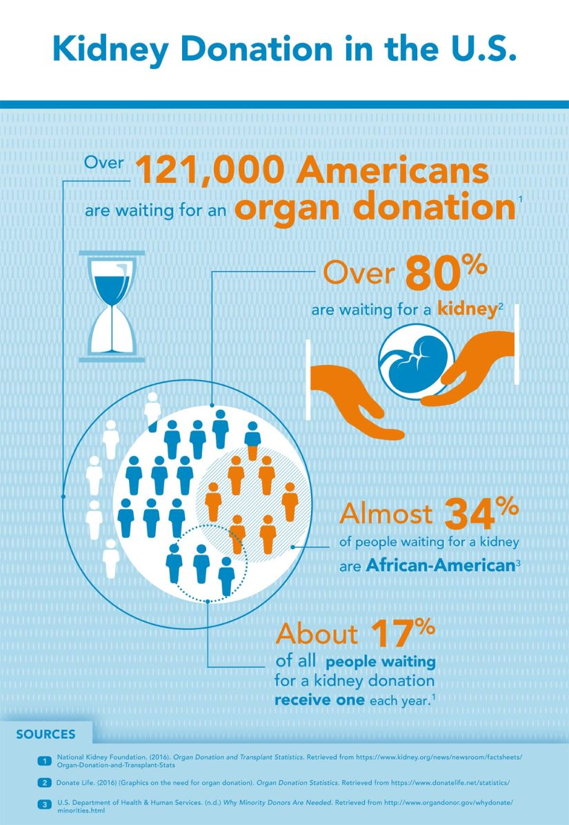 Kidney Donation Infographic