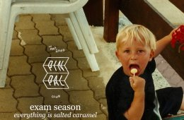 exam season everything salted caramel cover art