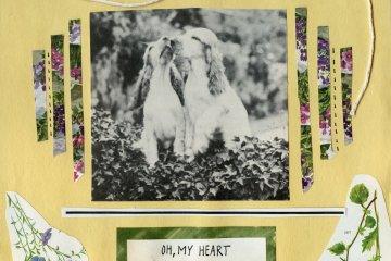 shannen moser oh my heart cover art