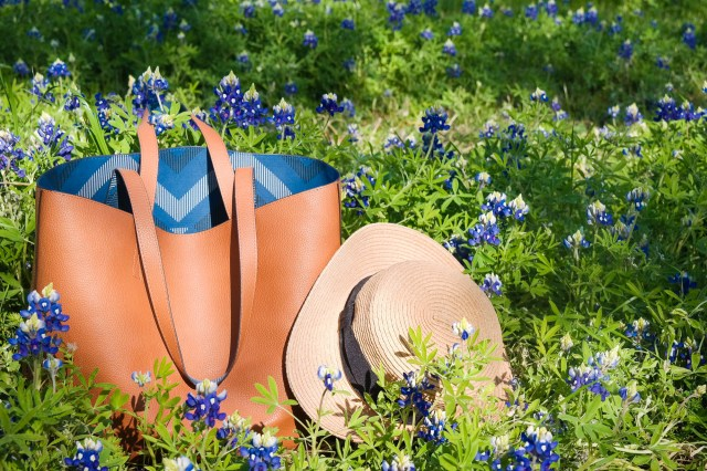 Waketon Road - Texas Bluebonnets