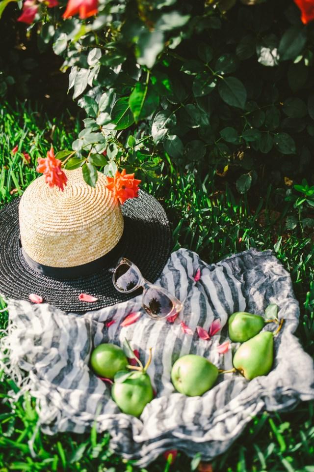 Pear Picking - Waketon Road Blog-2