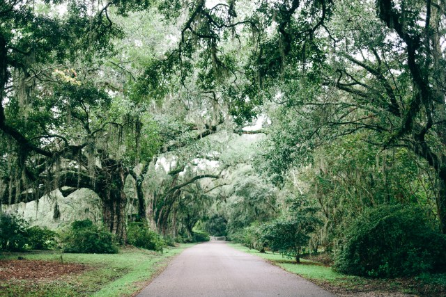 Visiting Magnolia Plantation - Waketon Road Blog wearing Reformation