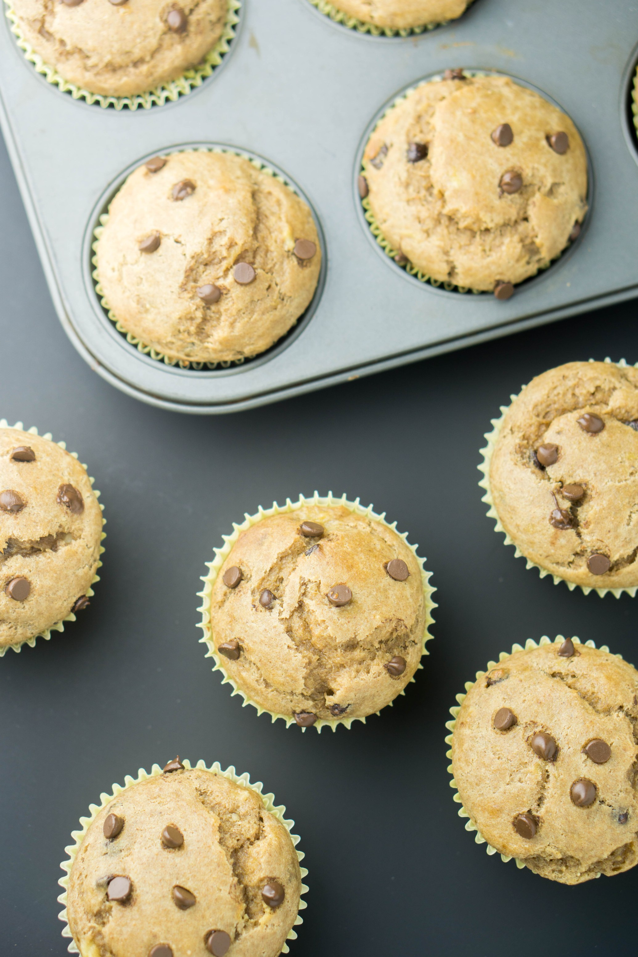 1-BOWL Peanut Butter Banana Chocolate Chip MUFFINS! super moist, sweet and nutritious! #healthy #banana #peanutbutter #chocolatechip #muffins #wholewheat #recipe | www.wakeuptowaffles.com