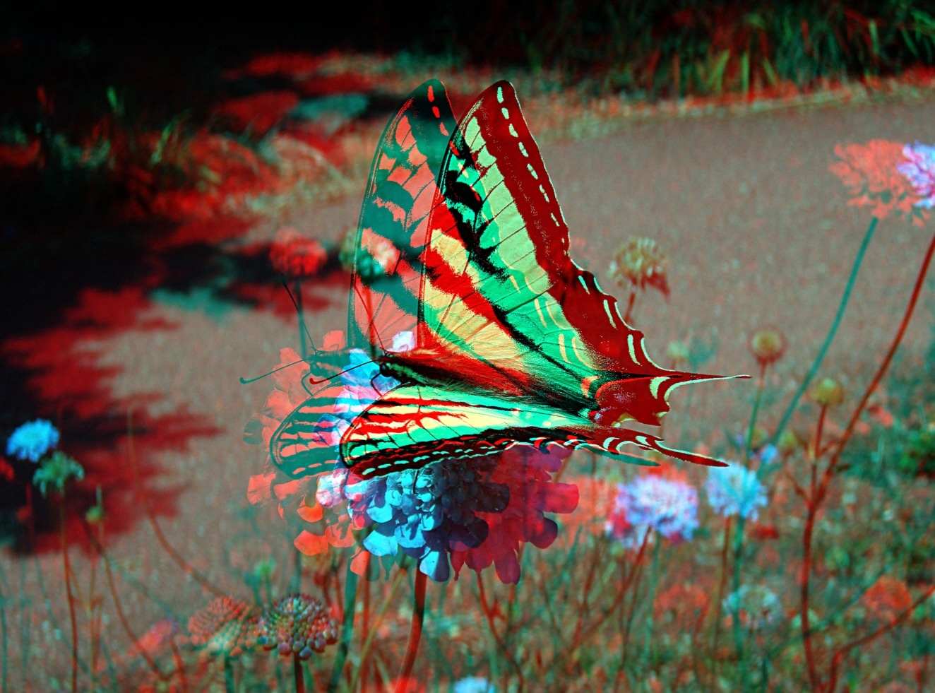 The Butterfly Effect And Individual Action