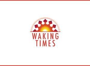 WIKI - Mayan Zodiac